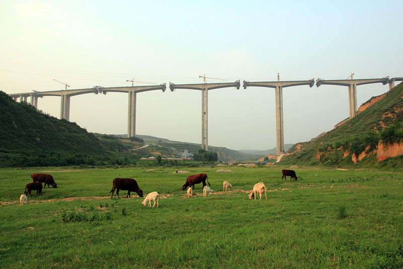 File:Wulislope&Animals.jpg